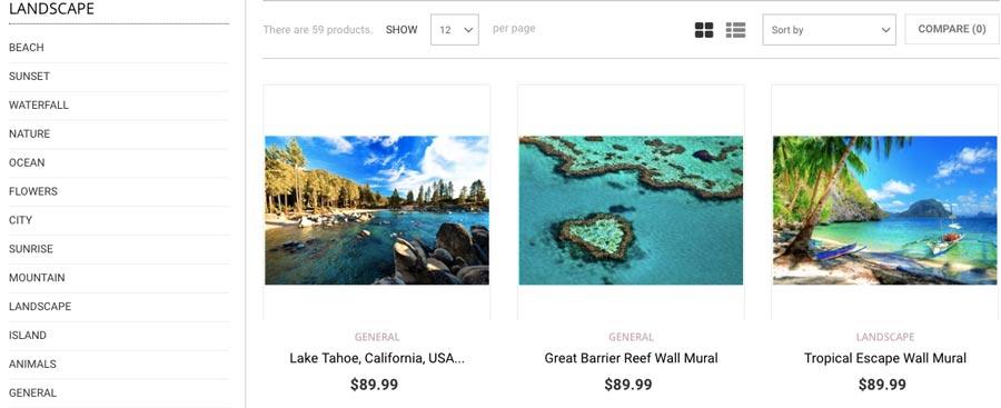 Make money online with ecommerce websites