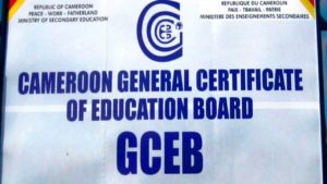 GCE 2019 Results O & A Level General & Technical Review