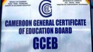 "GCE Results 2019 O Level PDF Download. The Cameroon General Certificate of Education Results for June 2019 has ""officiously"" been released. Here are the GCE"