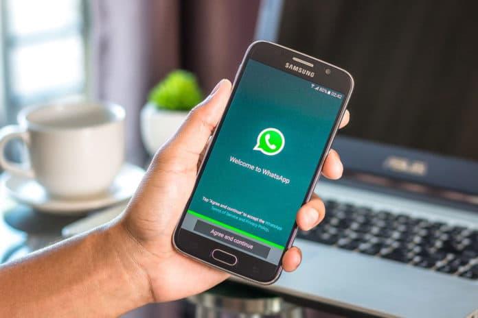 Free virtual phone number for WhatsApp verification